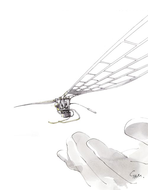 fly-from-hand